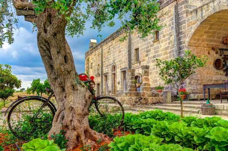 Lonely Planet's best value travel destinations for 2014 - Lonely Planet